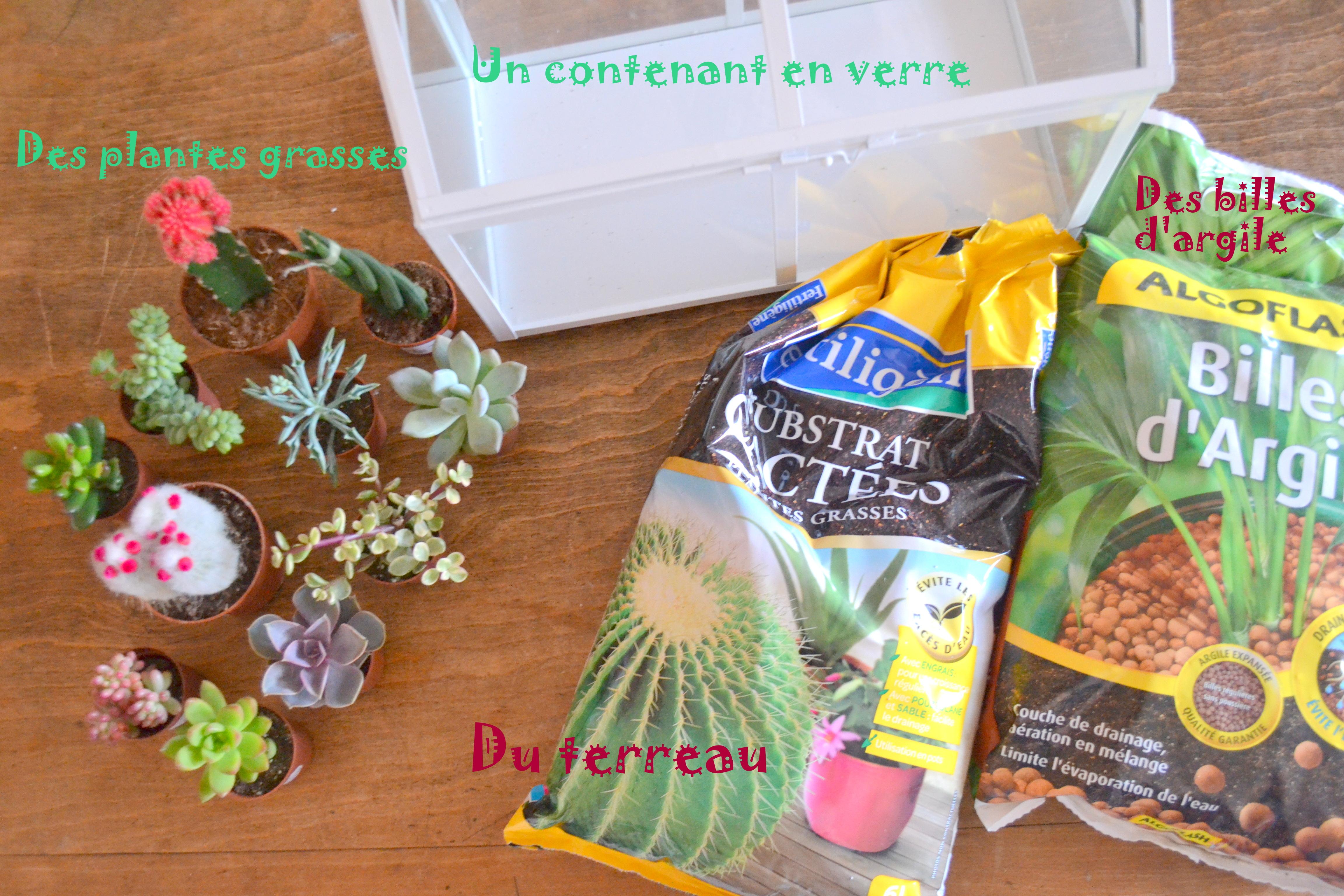 Diy d̩co: le mini jardin de succulentes Рdemoiz'elle vivi